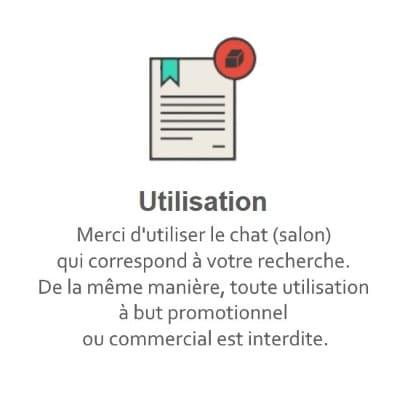Règles du Tchat Gratuit de Rencontre-Geek.eu